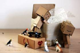 Перевозка мебели с грузчиками недорого по Ростовской области